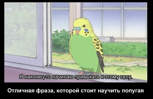 http://sobiratelzvezd.ru/wp-content/uploads/2013/02/XN8Mz96sVkE.jpg