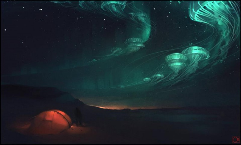 медузы на небе